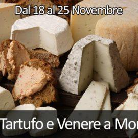 Fossa, Tartufo e Venere a Mondaino Domenica 18 e 25 Novembre
